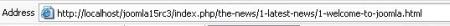 SEO Optie gebruik en resultaat URL